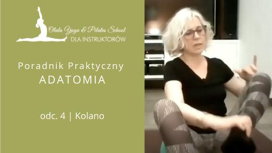 Kolano – Poradnik Praktyczny Adatomia